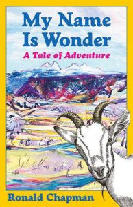 Cover image of My Name is Wonder by Ronald Chapman