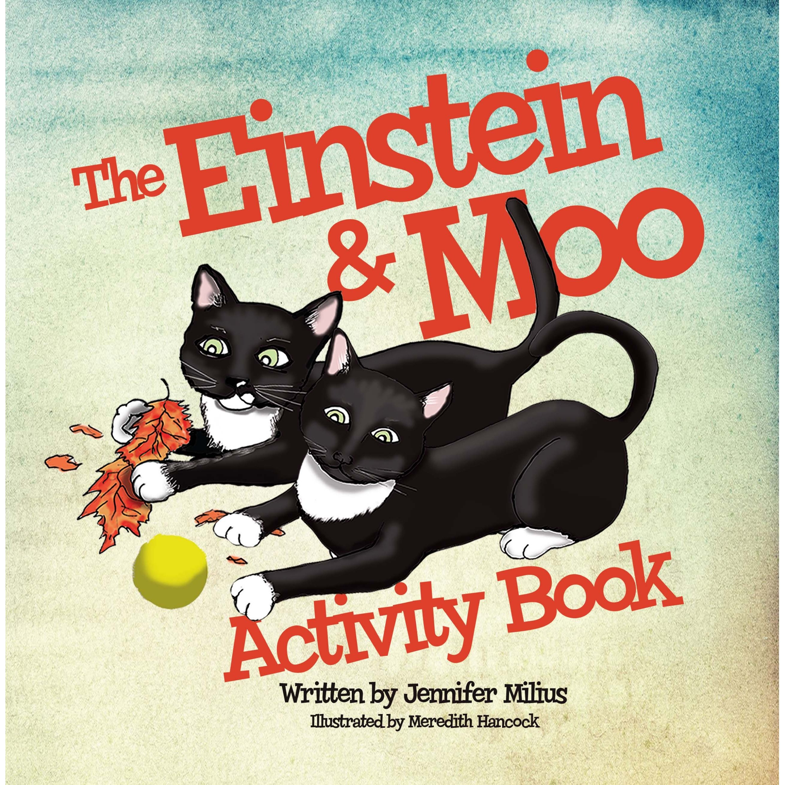 Einstein & Moo Series