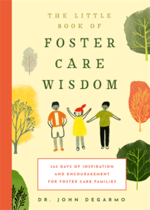 The Little Book of Foster Care Wisdom 365 Days of Inspiration and Encouragement for Foster Care Families