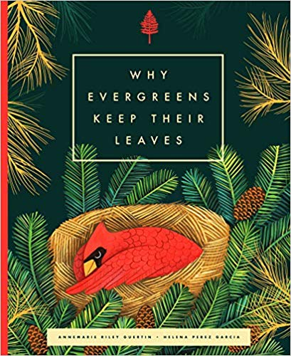 "Come Find Out ""Why Evergreens Keep Their Leaves"""
