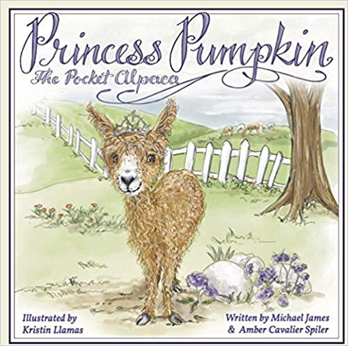 "Meet the ""Princess Pumpkin the Pocket Alpaca""!!"