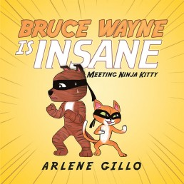 Bruce Wayne Is Insane: Meeting Ninja Kitty by Arlene Gillo