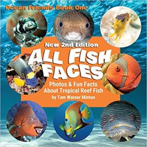 All Fish Faces: Photos and Fun Facts about Tropical Reef Fish (Ocean Friends)